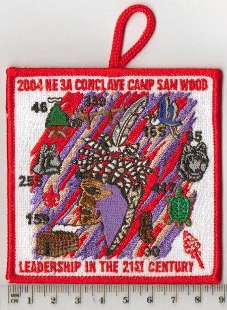 Section NE-3A 2004 Pocket Patch