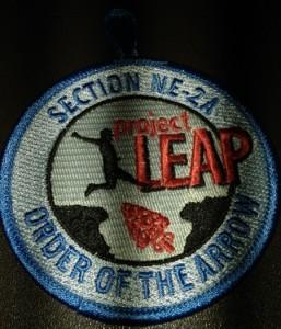 Section NE-2A 2013 Project Leap - Participant Patch