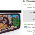 Withlacoochee Lodge #98 First Flap S1 Update
