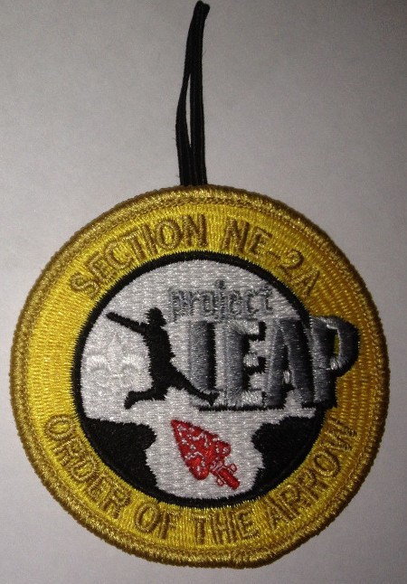 Section NE-2A 2014 Project Leap – Participant Patch
