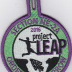 Section NE-2A 2016 Project Leap Participant Patch