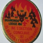 Section NE-3 1987 Section Conclave Pin