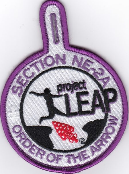Section NE-2A 2017 Project LEAP Participant Pocket Patch