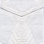 Tschipey Achtu Lodge #(95) 2018 NOAC Fundraiser White Set S31 X17