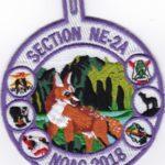 Section NE-2A 2018 NOAC Pocket Patch